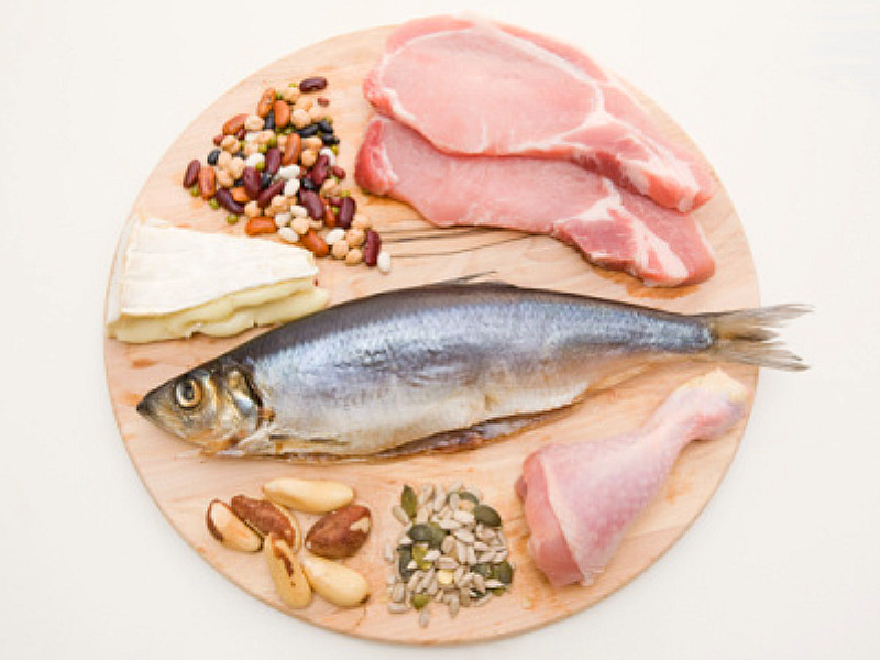 everything you need to know about protein nutrition